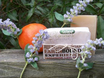 Photo of Earthbound Soap